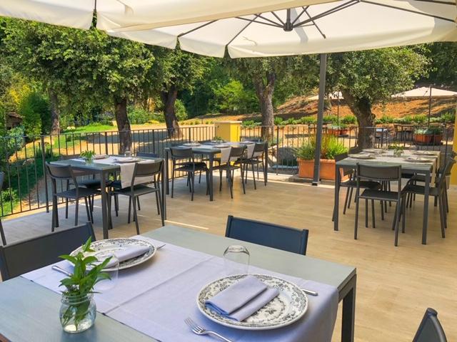 Cantinale Monteriggioni - Terrazza
