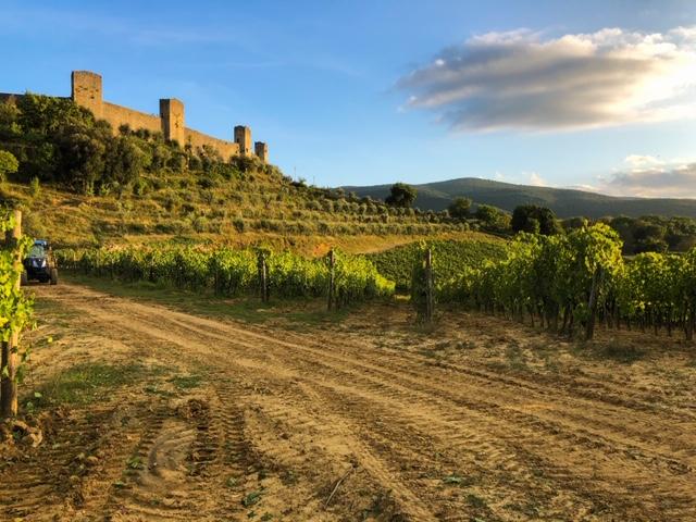 Cantinale Monteriggioni Wine Tour